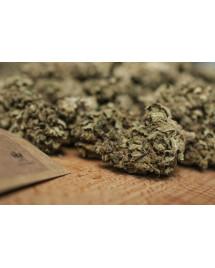 Susz konopny z CBD Remedium Mango Cookies