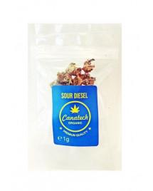 Susz konopny Sour Diesel 13 % CBD 1 g