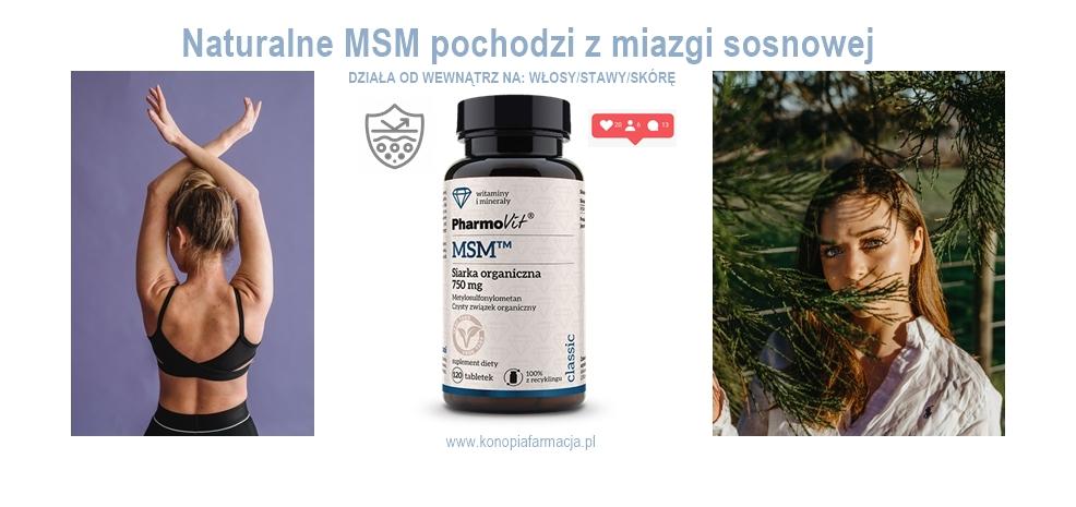 msm-siarka organiczna