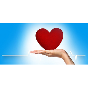 CBD w nadciśnieniu: badania wykazują pozytywne efekty w nadciśnieniu tętniczym