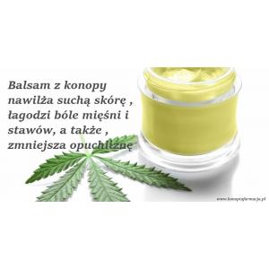 Balsam konopny nawilża suchą skórę , łagodzi bóle mięśni i stawów, a także , zmniejsza opuchliznę