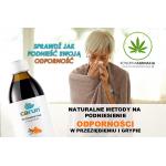 Naturalne metody na podniesienie odporności w przeziębieniu i grypie