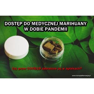 Dostęp do medycznej marihuany w dobie pandemii . Czy przez COVID-19 zabraknie jej w aptekach ?